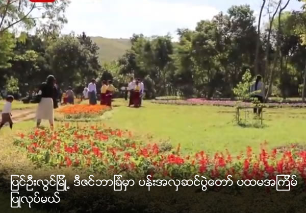 December Garden to showcase 400,000 flowering plants at Pyin Oo Lwin