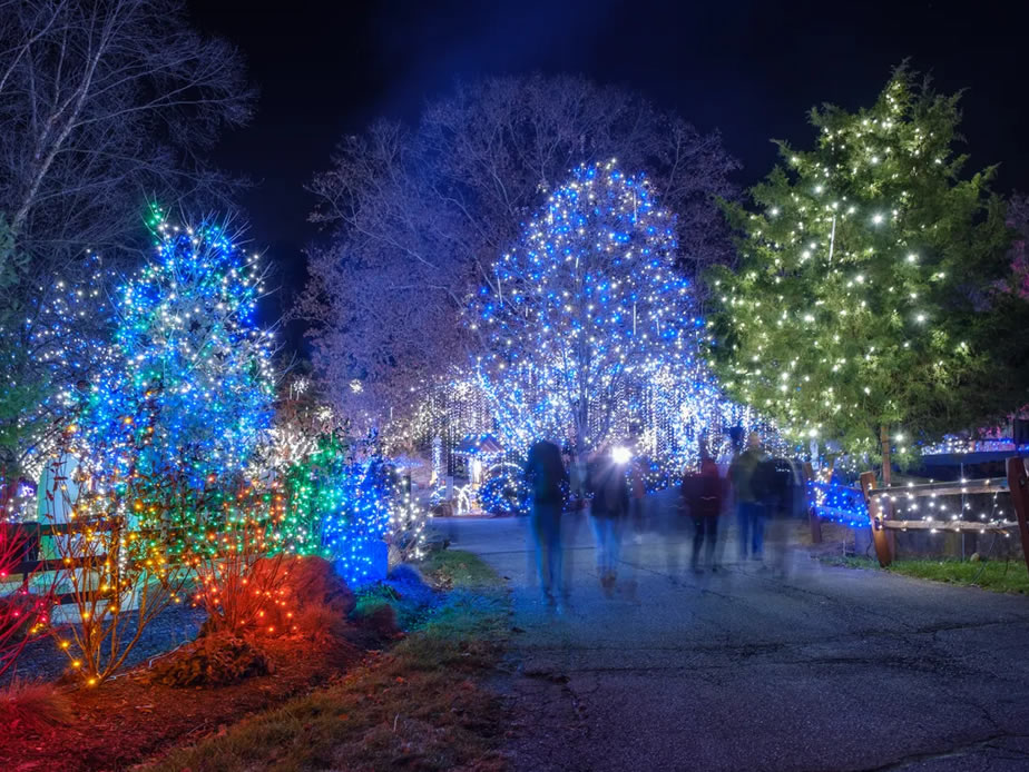 Holiday light displays worth traveling for across America
