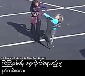 Terrifying moment loose dog attacks five-year-old girl in a church parking lot and bites her arm as adults try desperately to pry the animal off her